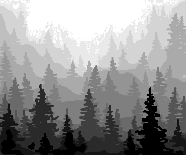 Foggy forest in the mountains (B&W)