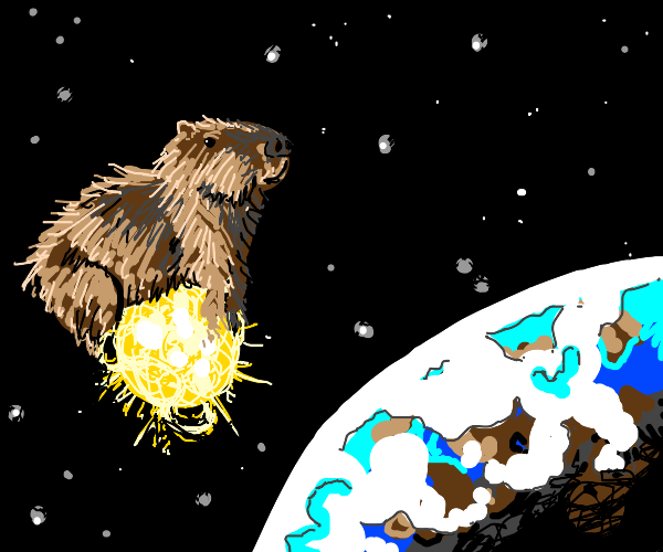 Capybara on a star