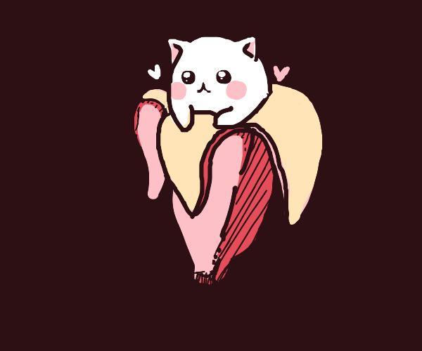 cat in a banana peel!!!!