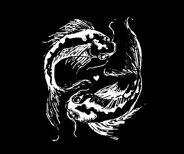 Yin & yang fish