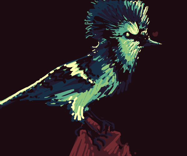 bird with an edgy haircut
