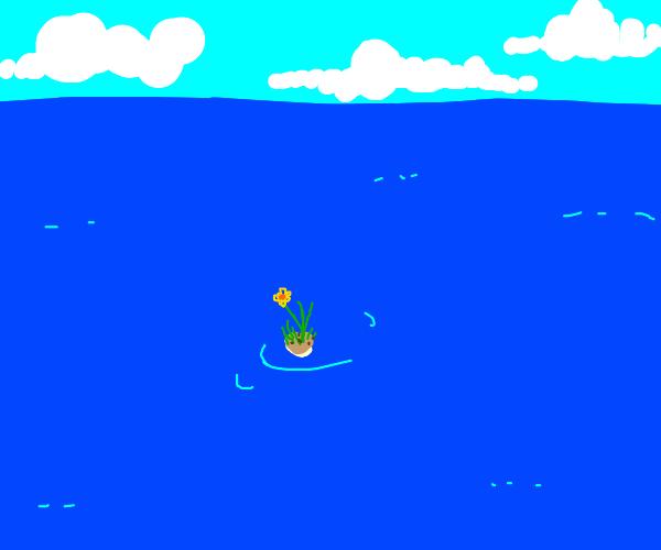 Micro island