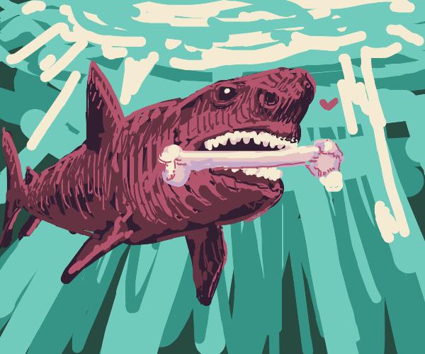 Shark carrying a bone