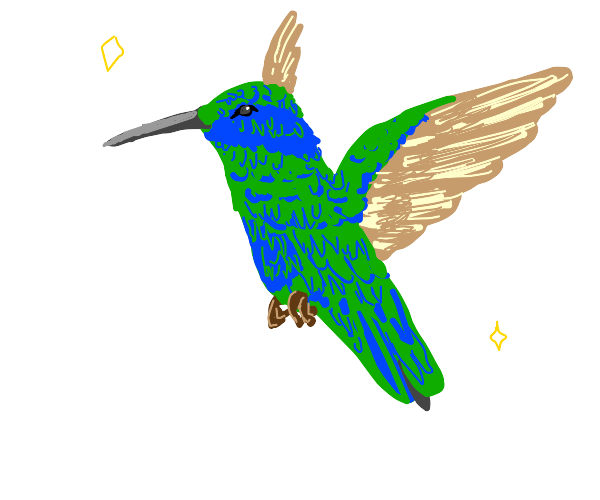 FABULOUS hummingbird