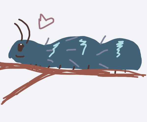 Caterpillar with one eye
