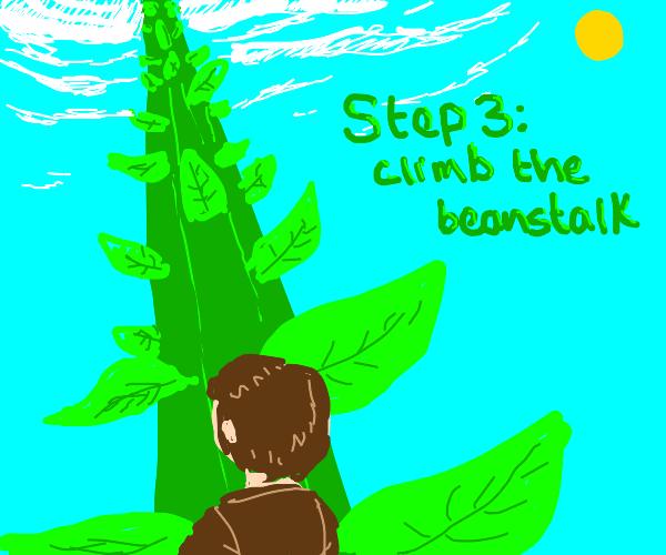 Step 2: grow a beanstalk