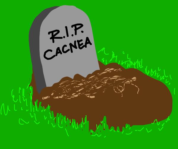 cacnea died ;(