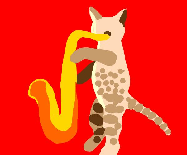 jazz cat!