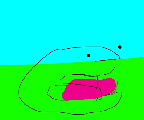 lizard with eraser sit in grass