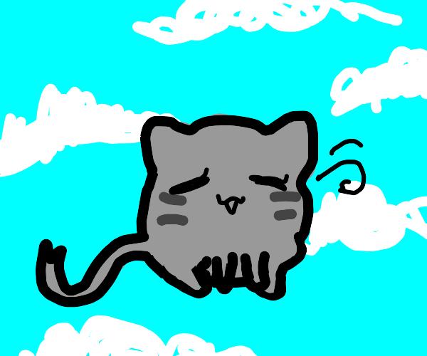 happy cat head floats in sky