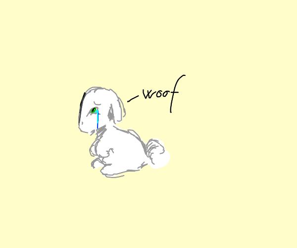 A sad dogbunny