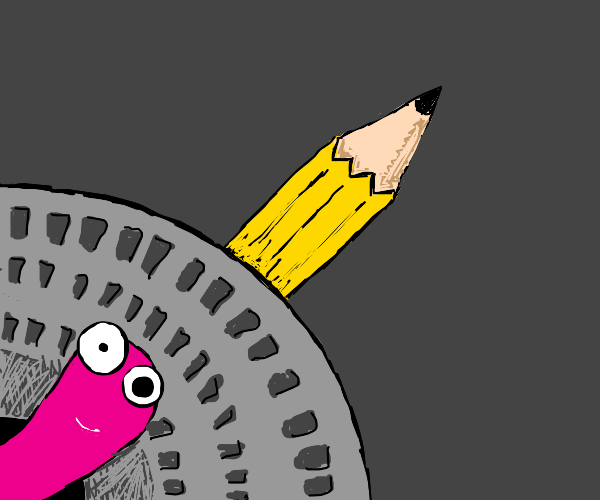 Pink worm comes out of drain hole with pencil
