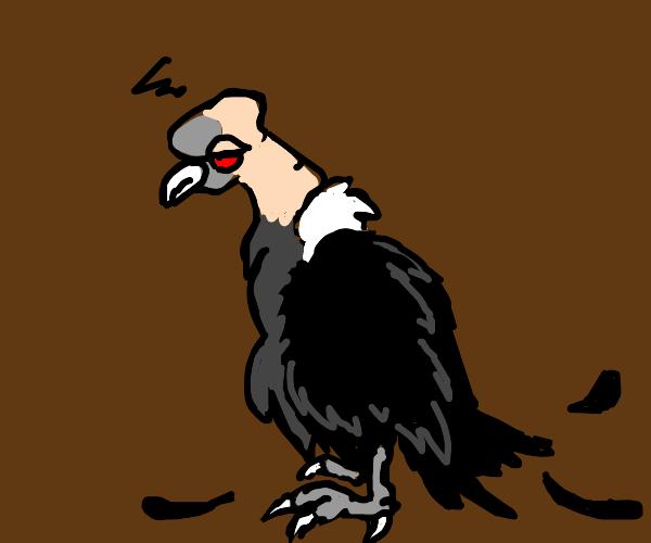 tired bird