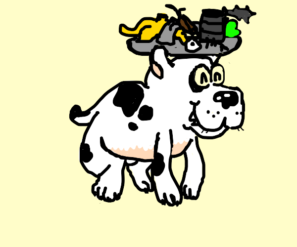 Dog with hat made of trash