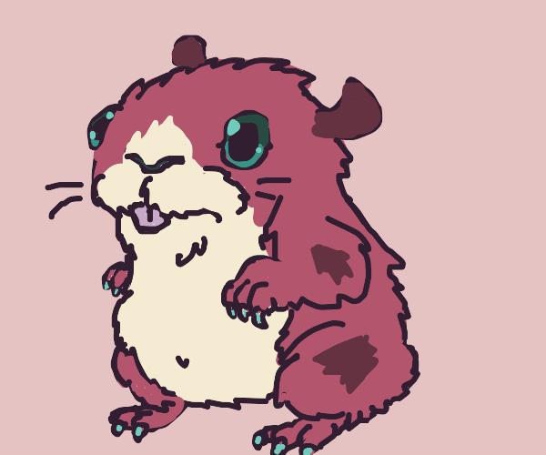 guinea pig hamster hybrid is CUTE