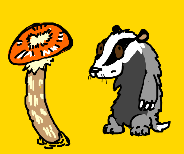 really small badger is the size of a mushroom