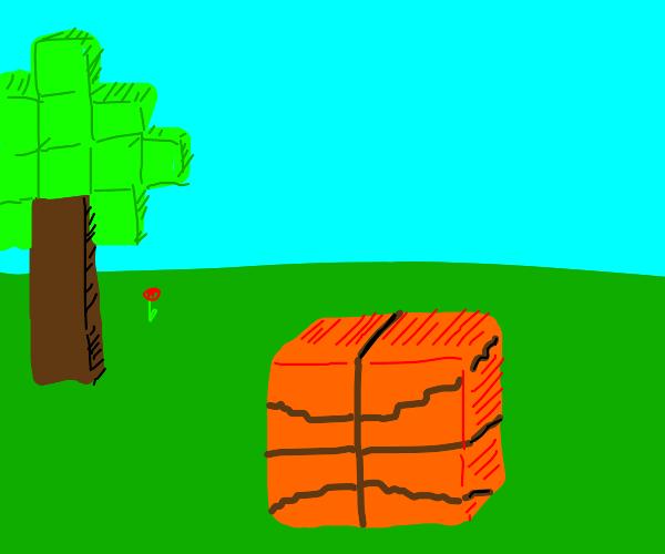 minecraft version of a basketball