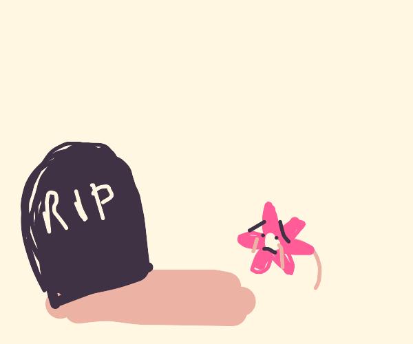 Flower mourns a friends death