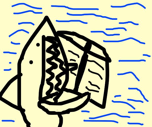 Shark holding a book open
