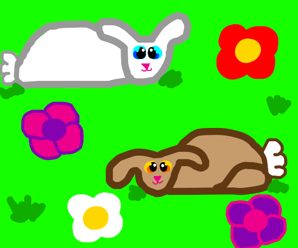 Bunnies in a field of flowers