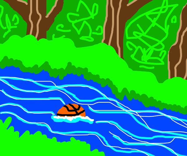 Basketball floating down stream