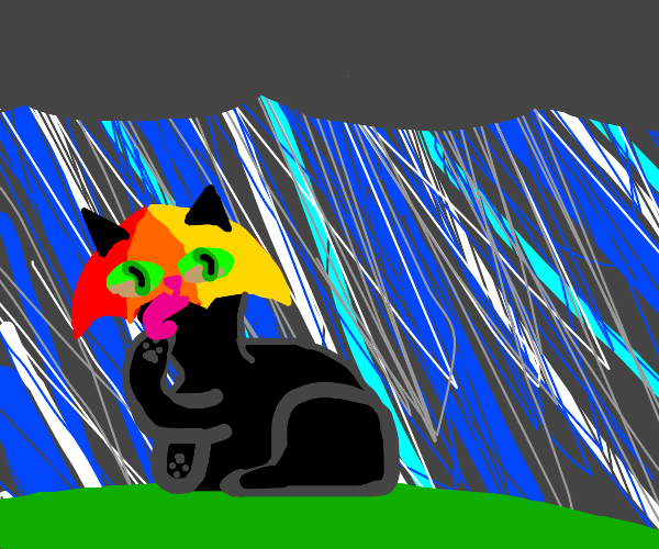 cat with umbrella head in rain licking paw