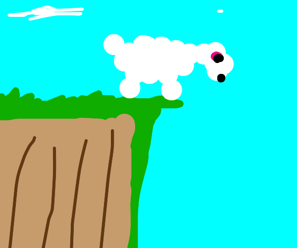 sheep standing on a cliff