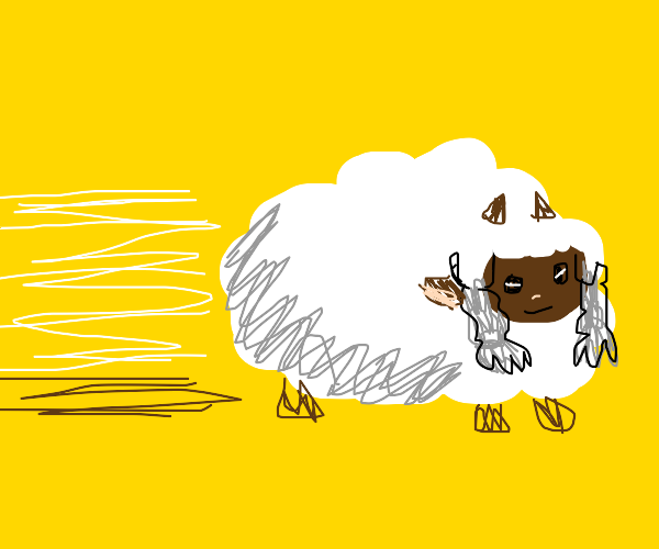 speed sheep