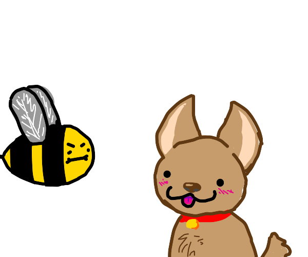 Cute dog with bee