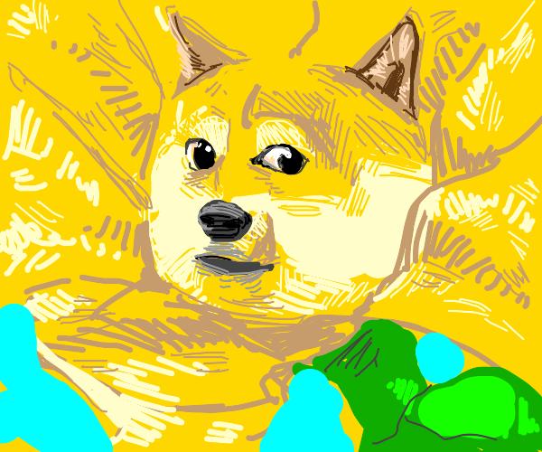 Doge Flower.