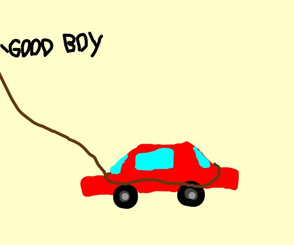 car pet