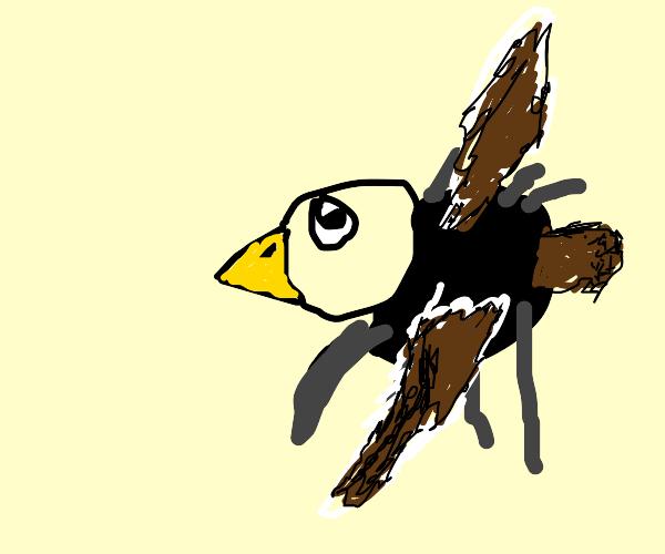 Spider bird moves in