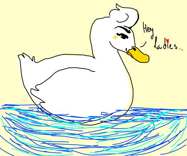 A suave duck with a pompadour