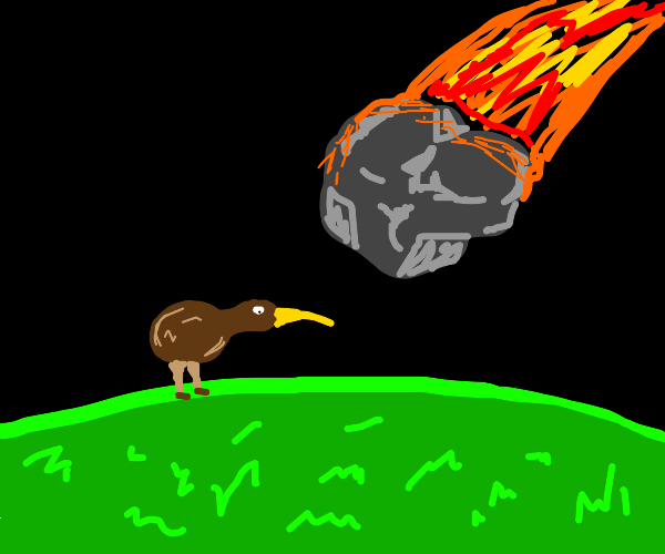 kiwi birds getting hit by meteors and dying