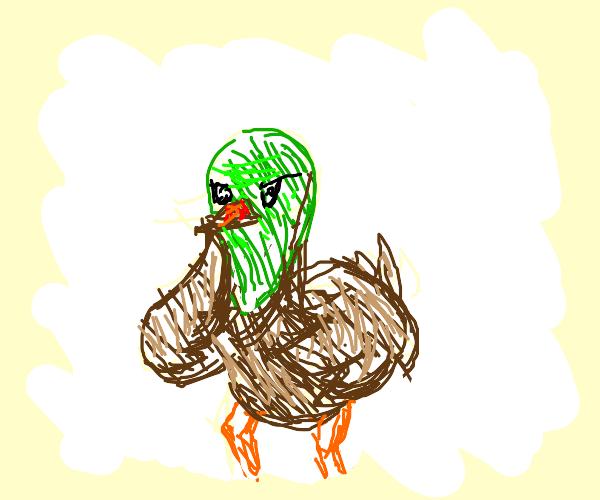 Buff karate duck