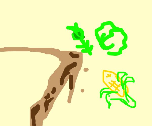 Veggies float off cliff