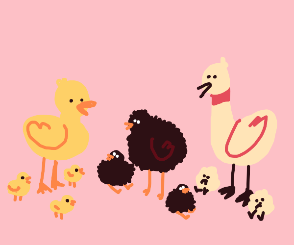 Ducks, Kiwis, and Geese :V