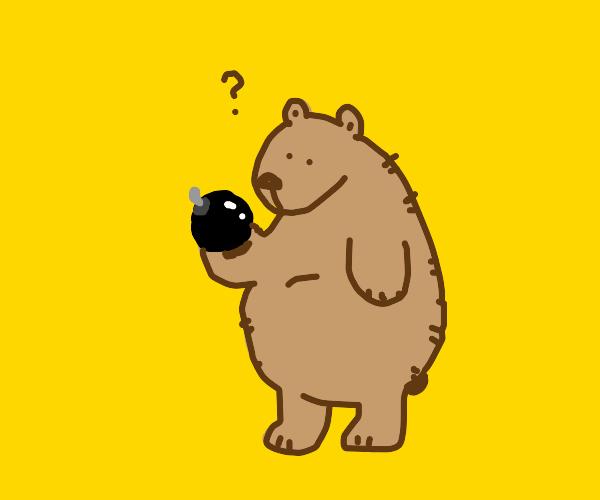 Bear holding a bomb