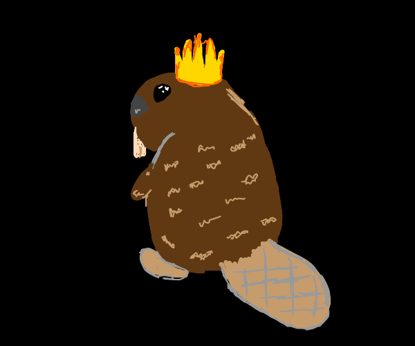 KING BEAVER, KING OF BEAVERS