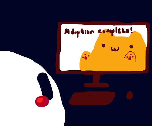 adopting a cat online