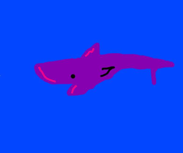 Obsidian Shark (obselach)