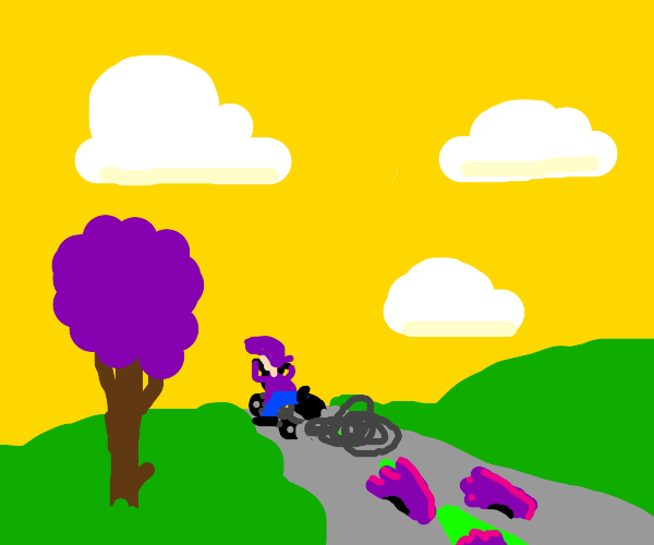 Highway Run