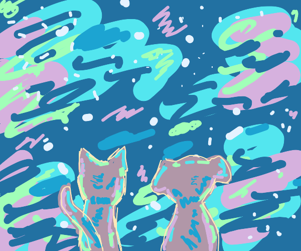 Cat and dog on the edge of the galaxy