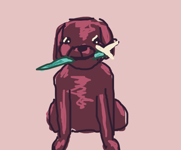 The dog has a knife