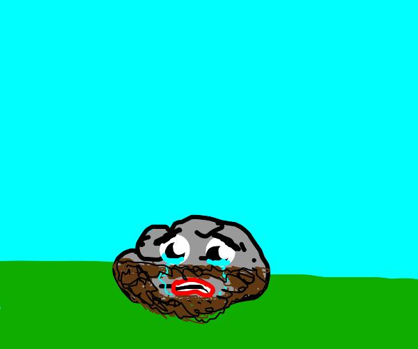 Bearded Rock is Sad