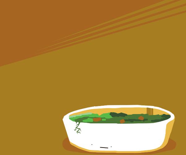 Injured Salad