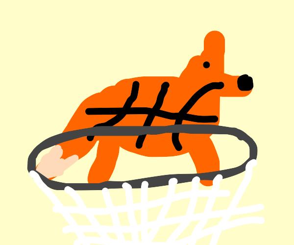 fox shaped basketball goes in hoop