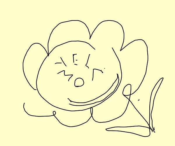 happy little yellow flower