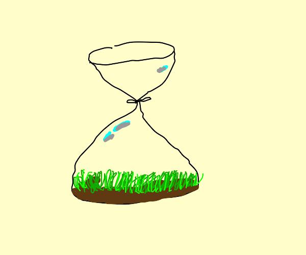 A bag of grass