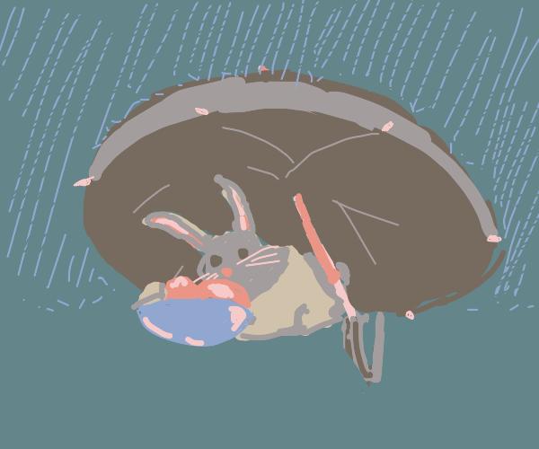 Bunny eating icecream under umbrella in rain